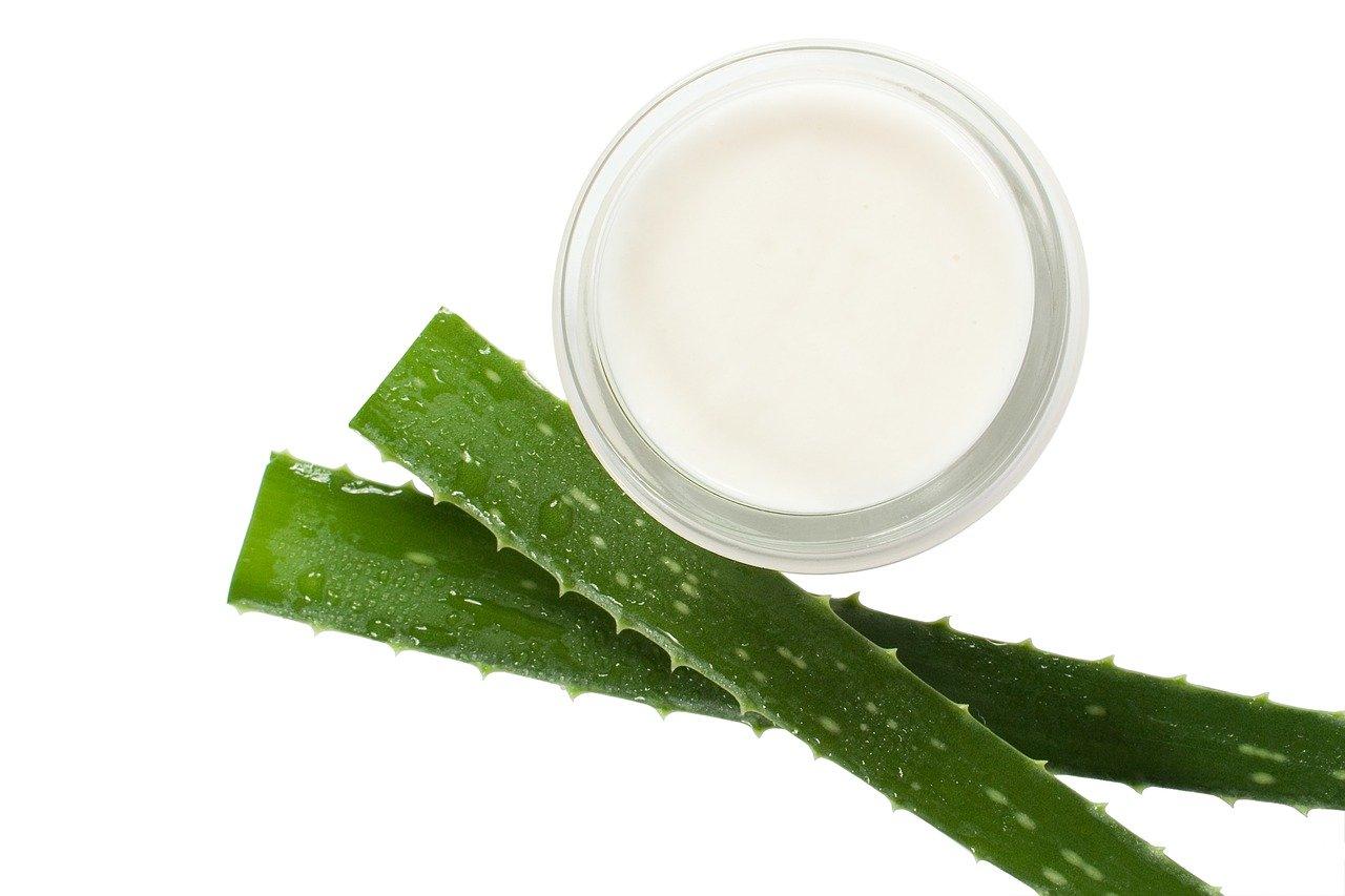 Les grandes propriétés de l'aloe vera pour l'entretien de notre peau.